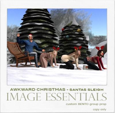 IE - Awkward Christmas Pics - Santas Sleigh - $100L