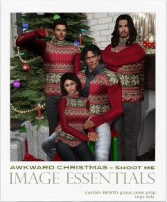 IE - Awkward Christmas - Shoot Me - $100L